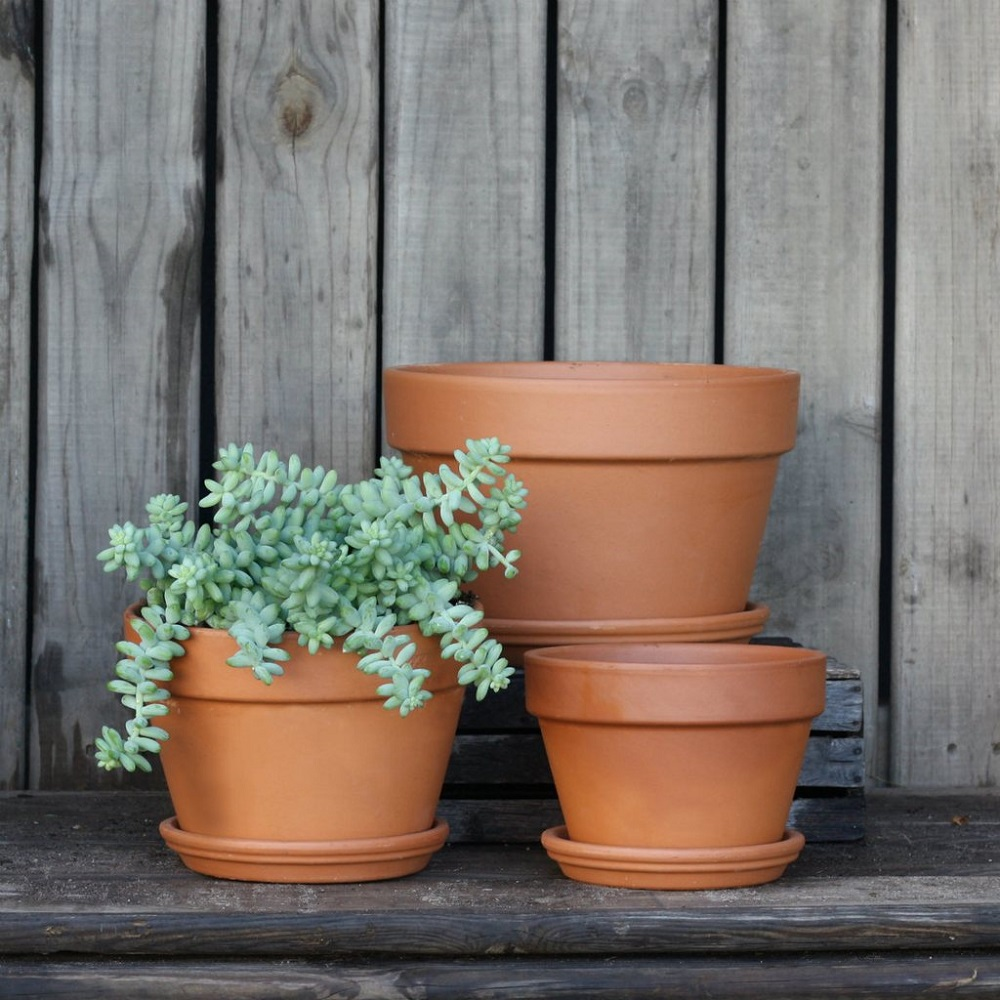 Brown Planters and Pots