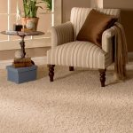 Tips for Keeping Your Carpet in Top Condition
